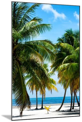 Paradise Beach - Florida - USA-Philippe Hugonnard-Mounted Photographic Print