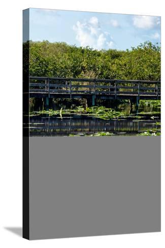 Crocodile - Everglades National Park - Unesco World Heritage Site - Florida - USA-Philippe Hugonnard-Stretched Canvas Print