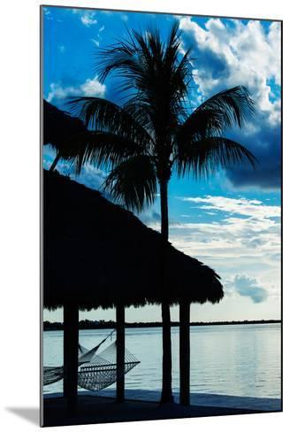 The Hammock and Palm Tree at Sunset - Beach Hut - Florida-Philippe Hugonnard-Mounted Photographic Print