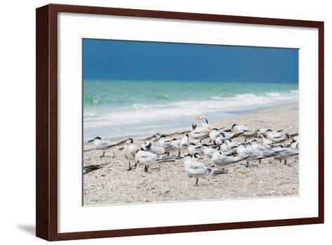 Seagulls on the Beach-Philippe Hugonnard-Framed Art Print