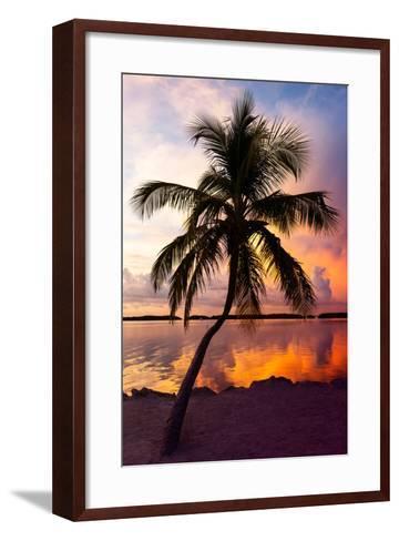 Palm Tree at Sunset - Florida-Philippe Hugonnard-Framed Art Print