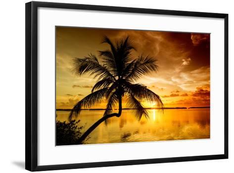 Palm Paradise at Sunset - Florida - USA-Philippe Hugonnard-Framed Art Print