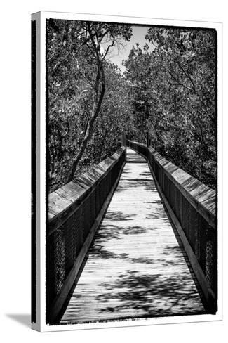 Wooden Path in the middle of a Forest in Florida-Philippe Hugonnard-Stretched Canvas Print
