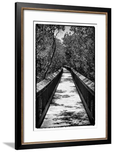 Wooden Path in the middle of a Forest in Florida-Philippe Hugonnard-Framed Art Print