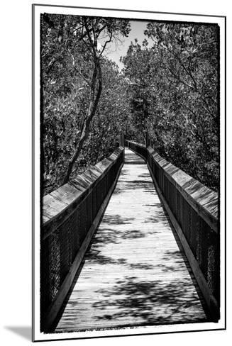 Wooden Path in the middle of a Forest in Florida-Philippe Hugonnard-Mounted Photographic Print
