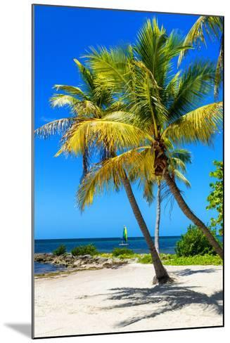 Palms on a White Sand Beach in Key West - Florida-Philippe Hugonnard-Mounted Photographic Print