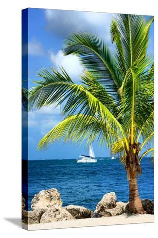 Paradise Palm Tree with a Sailboat on the Ocean - Florida-Philippe Hugonnard-Stretched Canvas Print