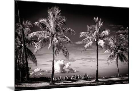 Palm Trees overlooking Downtown Miami - Florida-Philippe Hugonnard-Mounted Photographic Print
