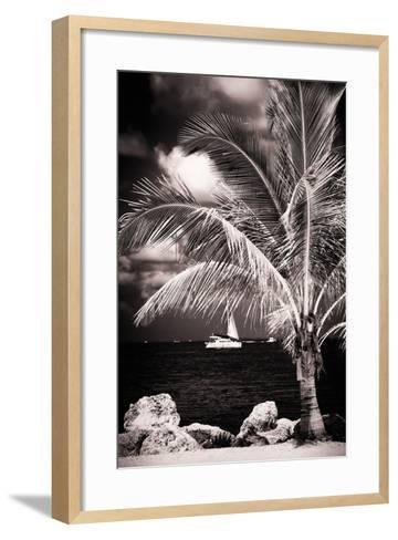 Paradise Palm Tree with a Sailboat on the Ocean - Florida-Philippe Hugonnard-Framed Art Print