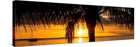 Sunset Landscape with Yacht - Miami - Florida-Philippe Hugonnard-Stretched Canvas Print
