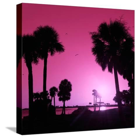 Silhouette Palm Trees at Sunset-Philippe Hugonnard-Stretched Canvas Print