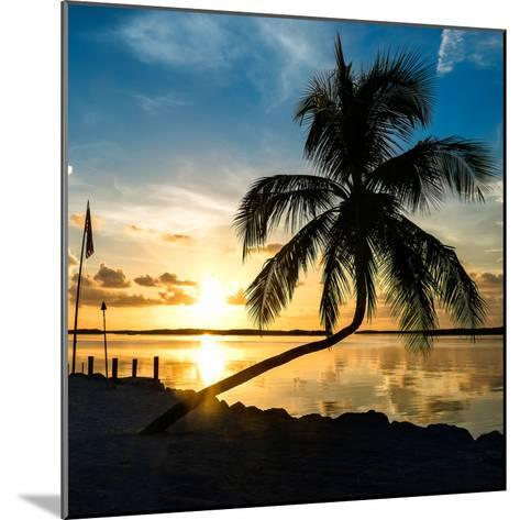 Sunset of Dreams - Florida - USA-Philippe Hugonnard-Mounted Photographic Print