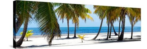 Paradise Beach - Florida - USA-Philippe Hugonnard-Stretched Canvas Print