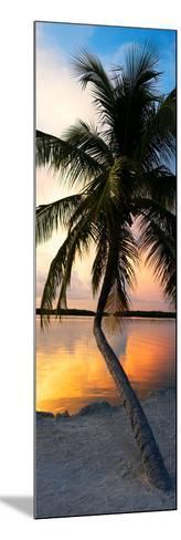 Palm Tree at Sunset - Florida-Philippe Hugonnard-Mounted Photographic Print