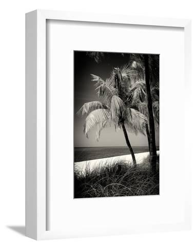 Palms on a White Sand Beach in Key West - Florida-Philippe Hugonnard-Framed Art Print