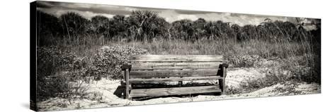 Wooden Bench overlooking a Florida wild Beach-Philippe Hugonnard-Stretched Canvas Print