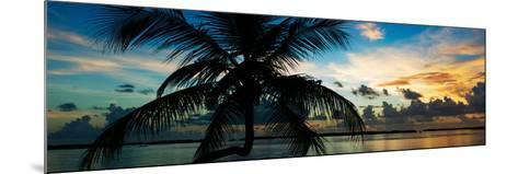 Silhouette of Palm Tree at Sunset-Philippe Hugonnard-Mounted Photographic Print