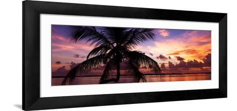 Silhouette of Palm Tree at Sunset-Philippe Hugonnard-Framed Art Print