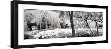 China 10MKm2 Collection - Another Look - Lotus Park-Philippe Hugonnard-Framed Art Print