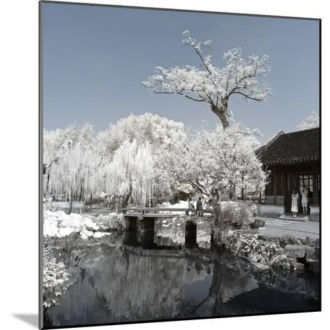 China 10MKm2 Collection - Another Look - Lotus Park-Philippe Hugonnard-Mounted Photographic Print
