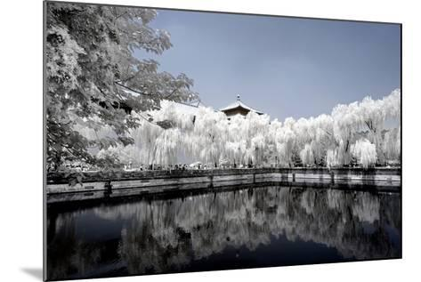 China 10MKm2 Collection - Another Look - Reflections-Philippe Hugonnard-Mounted Photographic Print