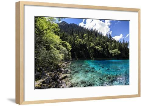 China 10MKm2 Collection - Beautiful Lake in the Jiuzhaigou National Park-Philippe Hugonnard-Framed Art Print