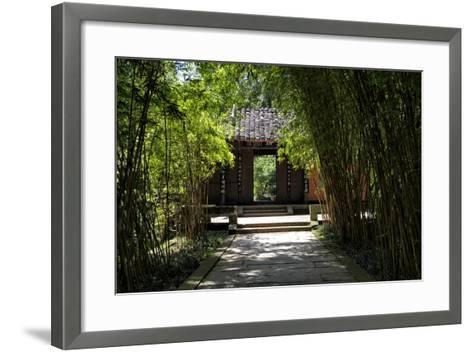 China 10MKm2 Collection - Bamboo Forest-Philippe Hugonnard-Framed Art Print