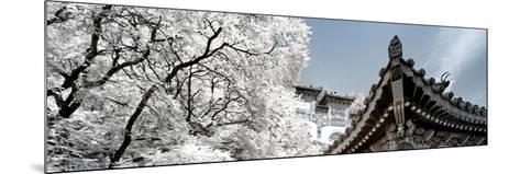 China 10MKm2 Collection - Another Look - Summer Palace-Philippe Hugonnard-Mounted Photographic Print