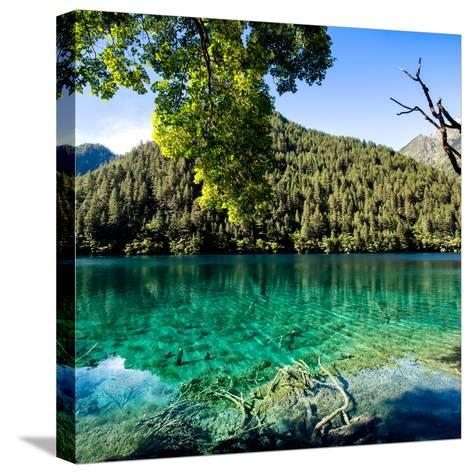 China 10MKm2 Collection - Beautiful Lake in the Jiuzhaigou National Park-Philippe Hugonnard-Stretched Canvas Print