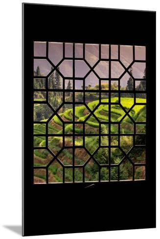 China 10MKm2 Collection - Asian Window - Rice Terraces - Longsheng Ping'an - Guangxi-Philippe Hugonnard-Mounted Photographic Print
