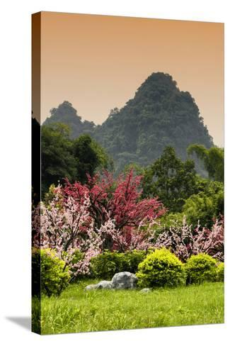 China 10MKm2 Collection - Beautiful Asian Garden-Philippe Hugonnard-Stretched Canvas Print