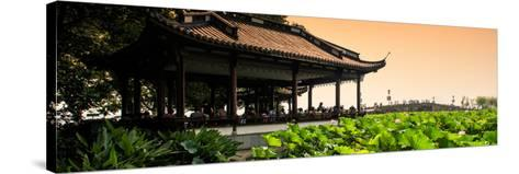 China 10MKm2 Collection - Lotus Garden-Philippe Hugonnard-Stretched Canvas Print