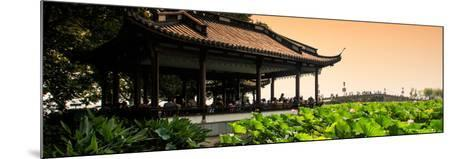 China 10MKm2 Collection - Lotus Garden-Philippe Hugonnard-Mounted Photographic Print