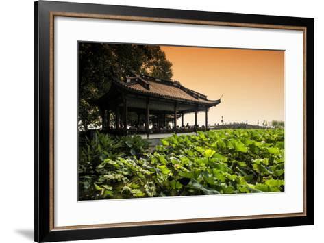 China 10MKm2 Collection - Lotus Garden-Philippe Hugonnard-Framed Art Print