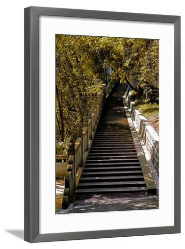 China 10MKm2 Collection - Stairway in the Forest-Philippe Hugonnard-Framed Art Print