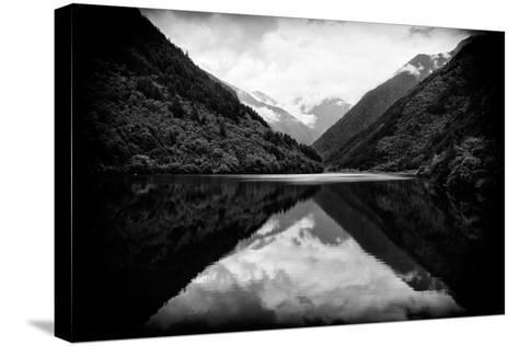 China 10MKm2 Collection - Rhinoceros Lake - Jiuzhaigou National Park-Philippe Hugonnard-Stretched Canvas Print