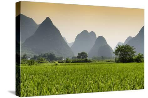 China 10MKm2 Collection - Karst Moutains in Yangshuo-Philippe Hugonnard-Stretched Canvas Print