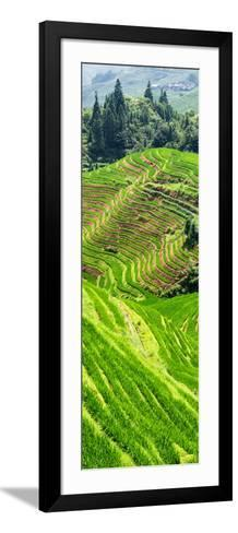 China 10MKm2 Collection - Rice Terraces - Longsheng Ping'an - Guangxi-Philippe Hugonnard-Framed Art Print
