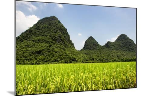 China 10MKm2 Collection - Karst Moutains in Yangshuo-Philippe Hugonnard-Mounted Photographic Print