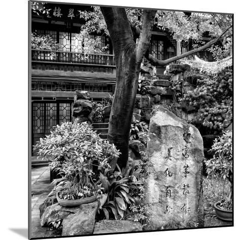 China 10MKm2 Collection - Chinese Garden-Philippe Hugonnard-Mounted Photographic Print