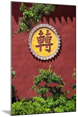 China 10MKm2 Collection - Leshan Temple-Philippe Hugonnard-Mounted Photographic Print