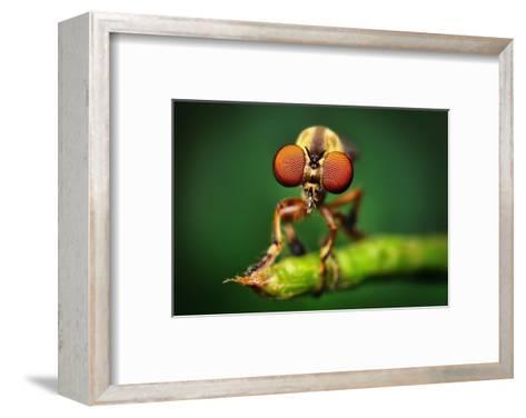 """""""Okay... now open your wallet as wide as you can."""" - Cartoon-Liza Donnelly-Framed Art Print"""