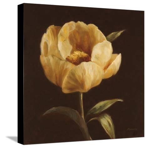 Floral Symposium I-Julianne Marcoux-Stretched Canvas Print