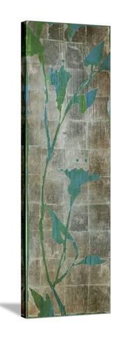 Transparent Leaves I-Liz Jardine-Stretched Canvas Print