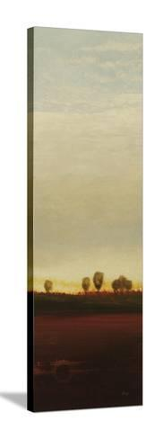Summer's End I-Lisa Ridgers-Stretched Canvas Print