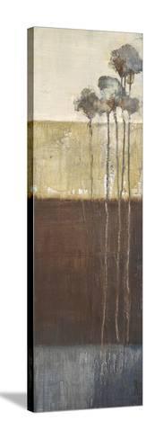 Palisade Palms I-Terri Burris-Stretched Canvas Print