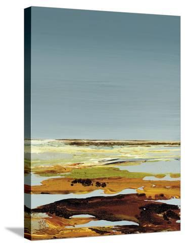 So Quietly III-Kelsey Hochstatter-Stretched Canvas Print