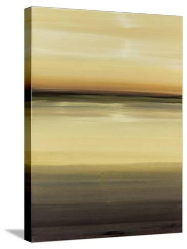 Warm Vision-Lisa Ridgers-Stretched Canvas Print