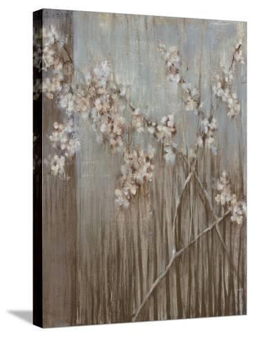 Spring Blossoms-Terri Burris-Stretched Canvas Print