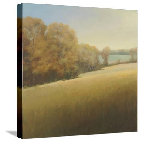 Distant Lake-Stephen Bach-Stretched Canvas Print